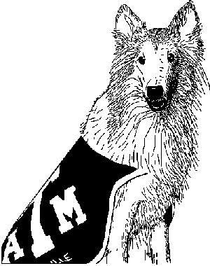 Texas a m university for Texas a m coloring pages
